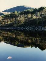 reflections in Silvermine reservoir