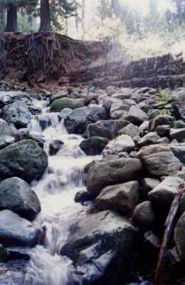 Newlands Stream after first rains