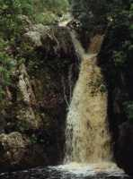 waterfall in Harold Porter Gardens