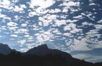 alto cumulus over Devil's Peak